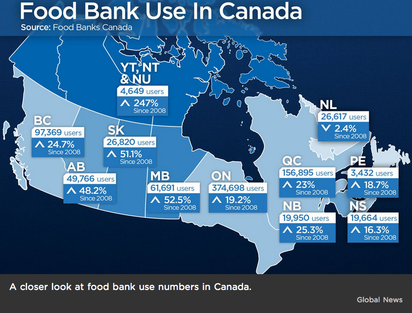 A closer look at food bank use numbers in Canada. Image by Global News.