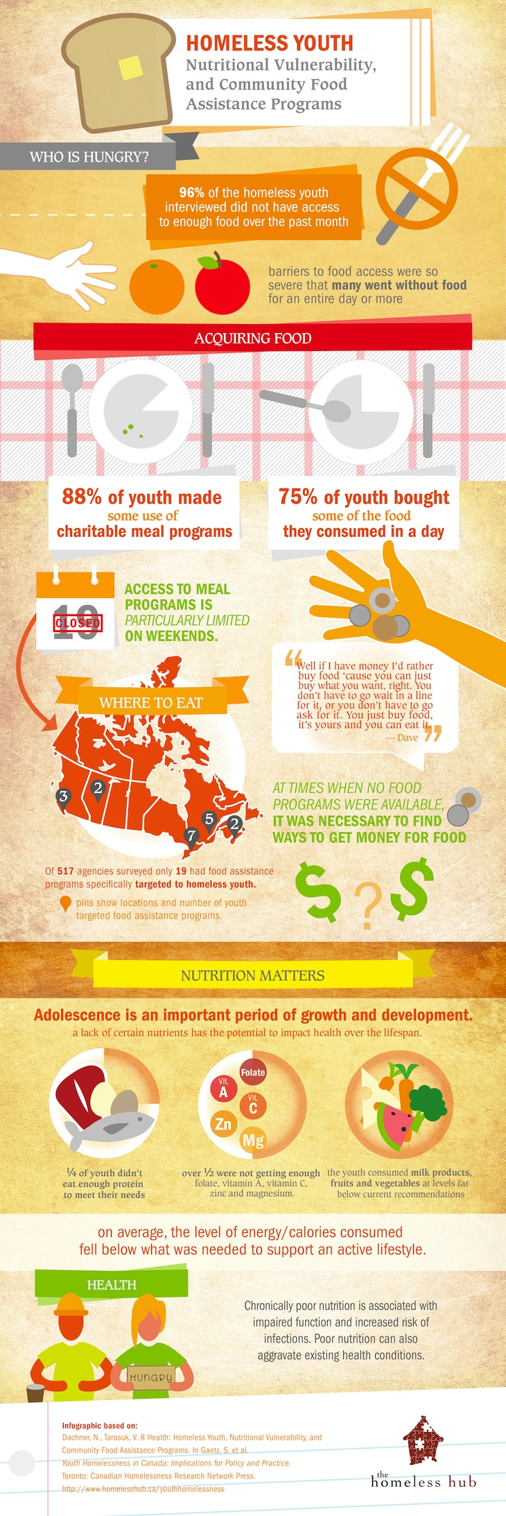 Homeless Youth, Nutritional Vulnerability, and Community Food Assistance Programs info graphic based on chapter 8 of the Youth Homelessness book.