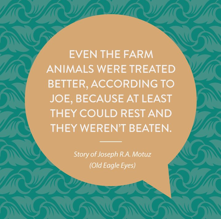 Even the farm animals were treated better, according to Joe, because at least they could rest and they weren't beaten.
