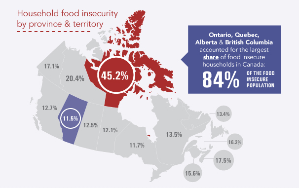 food insecurity in canada Food insecurity in toronto page 3 of 9 the nfb tool assumes the time and skill to find, purchase and prepare the least expensive options.